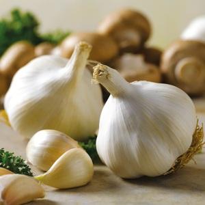 Manfaat Bawang Putih Yang Menakjubkan